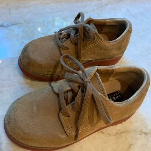 Sperry brown suede oxfords. Toddler 9W.